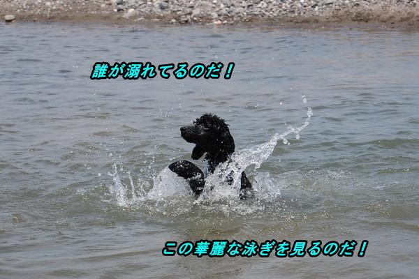 d0126511_6372164.jpg
