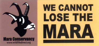 "\""WE CANNOT LOSE THE MARA"" Tシャツ\""販売_b0137038_22281363.jpg"