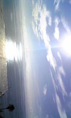 朝の海~_e0114246_2003528.jpg