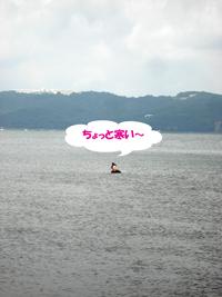 f0132070_13541126.jpg