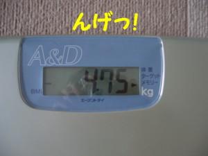 f0145192_1562129.jpg