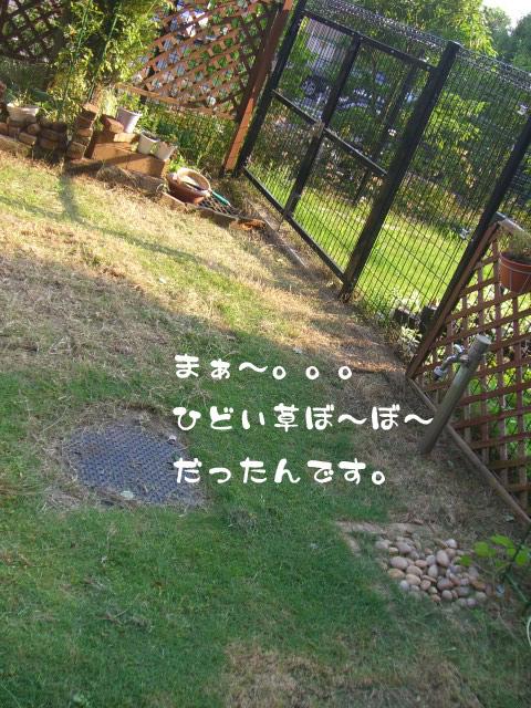 c0122897_1946426.jpg