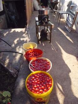 ヌンツィオ叔父さんのトマトソース製造機_f0106597_16263051.jpg