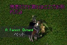 f0111598_1851912.jpg
