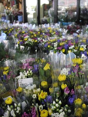切花が好評です!_c0141652_1745912.jpg