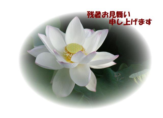 c0042869_22102053.jpg
