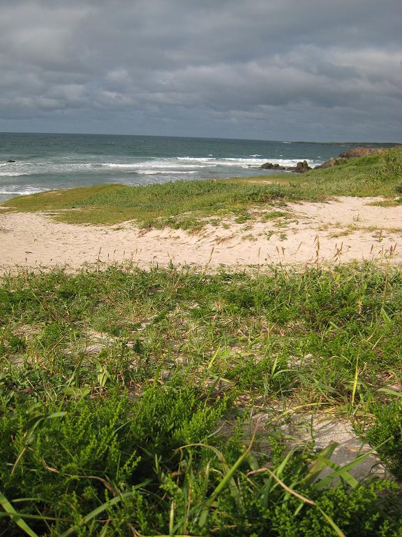 四日間の奇跡 ~夏・海・砂浜の匂い~  角島 その9_a0107574_20244685.jpg