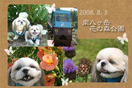 b0024183_1105477.jpg