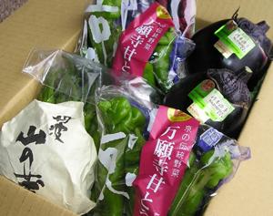 京野菜_e0139459_10363589.jpg