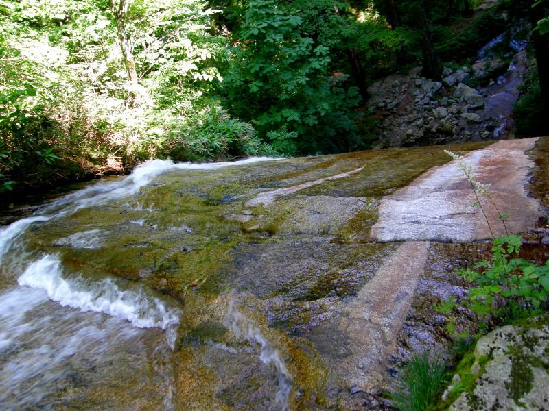又一の滝の上。。。_f0075075_4512941.jpg