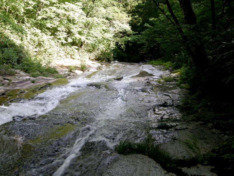 又一の滝の上。。。_f0075075_4532832.jpg