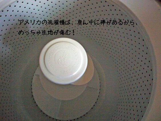 d0144727_1173264.jpg