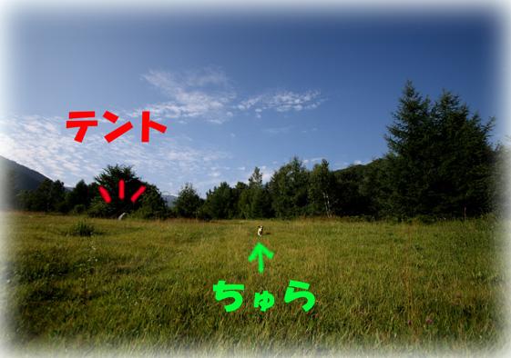 f0070233_1932772.jpg