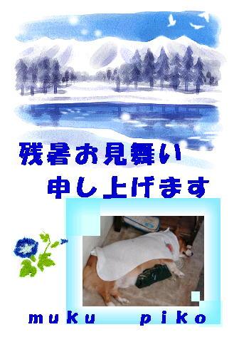 f0003174_14315841.jpg