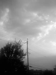 f0100480_1947568.jpg