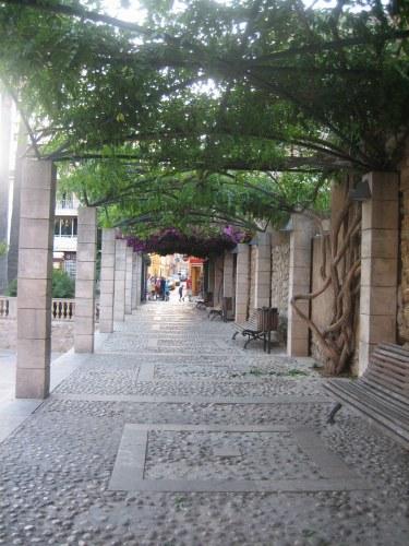 Mallorcaの思い出 15 アルタの町で見かけた扉_b0064411_21110.jpg