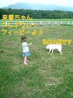 f0148927_2058012.jpg