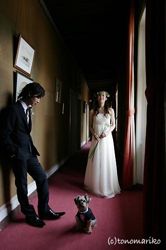 結婚式でおじゃま犬_c0024345_942753.jpg