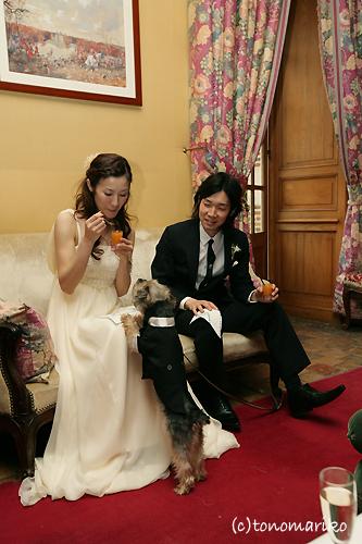 結婚式でおじゃま犬_c0024345_952018.jpg