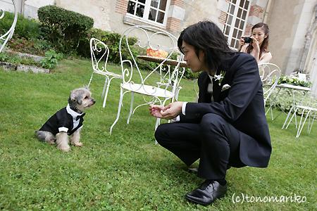 結婚式でおじゃま犬_c0024345_95296.jpg