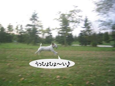 b0105157_19544639.jpg