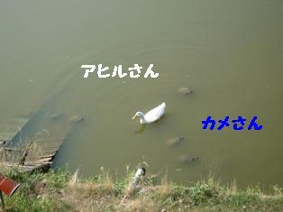 b0137280_22583878.jpg