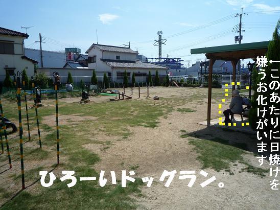 c0092097_1952516.jpg