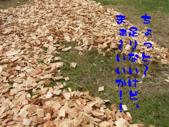 c0122897_1835840.jpg