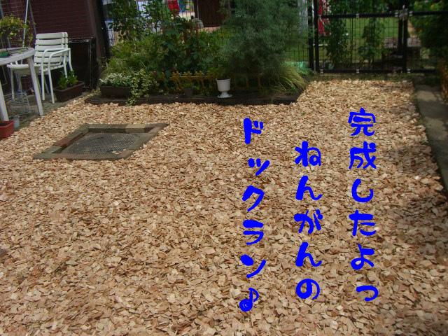 c0122897_18371277.jpg