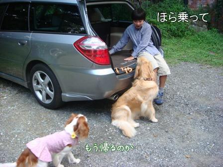 子供は大きくなり、犬は小さくなって・・・_f0064906_16442419.jpg