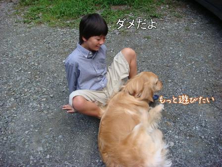 子供は大きくなり、犬は小さくなって・・・_f0064906_16452465.jpg