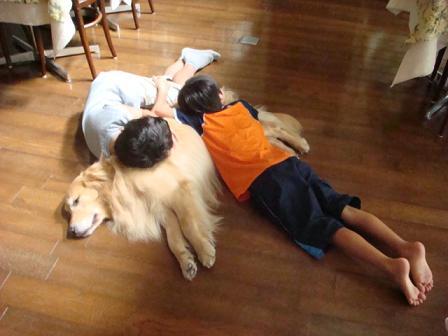 子供は大きくなり、犬は小さくなって・・・_f0064906_16491991.jpg