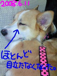 c0134720_1502981.jpg