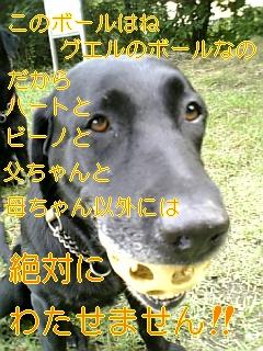 f0148927_18393266.jpg