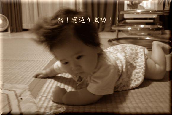 cocoちゃん寝返り!_a0105872_8332392.jpg