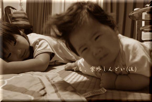 cocoちゃん寝返り!_a0105872_8335360.jpg