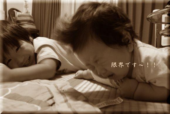 cocoちゃん寝返り!_a0105872_834958.jpg