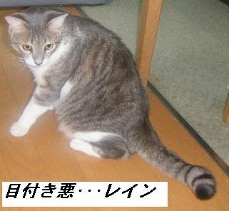 b0112380_19512799.jpg