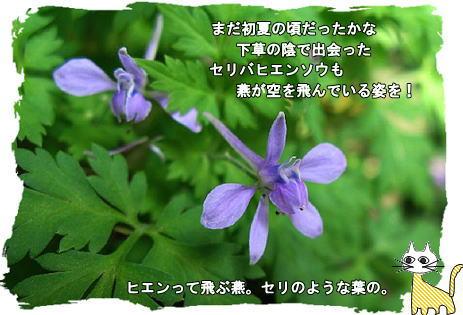 f0137096_22374866.jpg