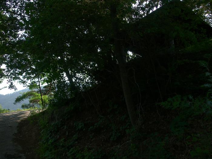 f0175998_185319.jpg