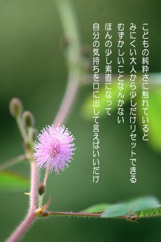 f0071242_9311397.jpg
