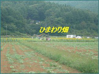 a0100160_1214971.jpg