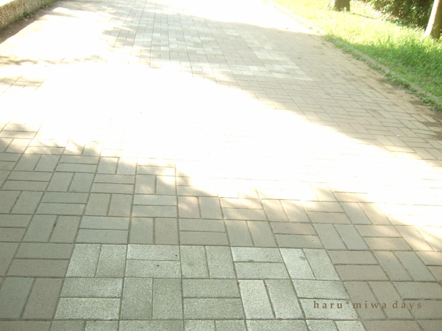 d0039963_22182491.jpg