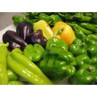 野菜たち_b0057979_21182882.jpg