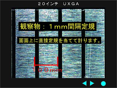 c0164695_1492359.jpg