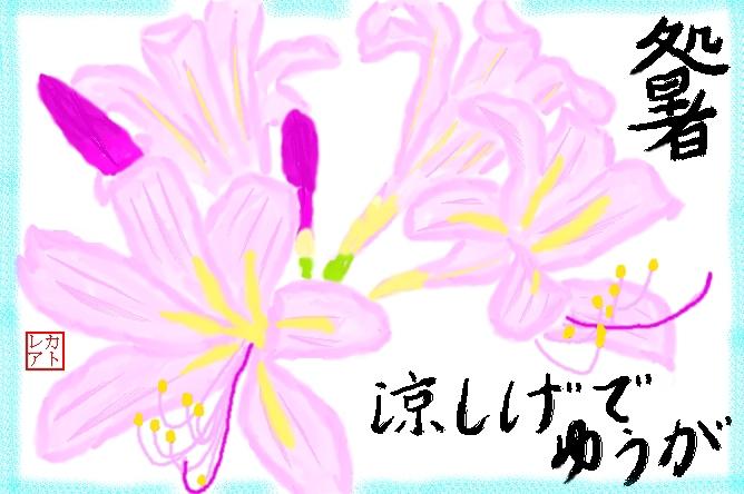 f0124098_1349856.jpg