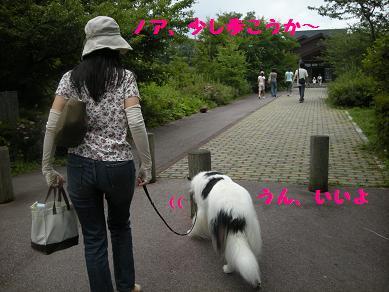 f0081100_161636.jpg