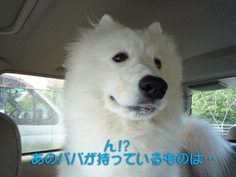 b0146024_14275962.jpg