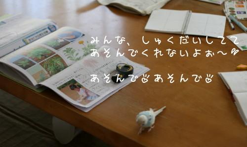 b0143835_16134063.jpg