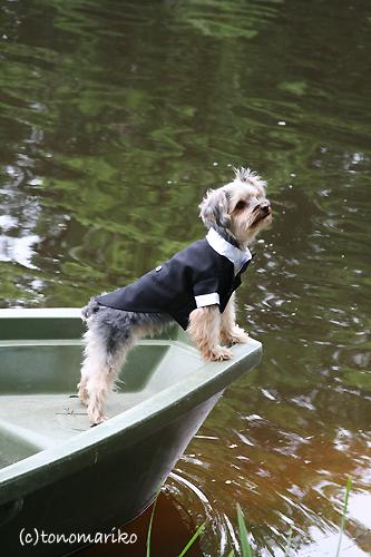 ボートの撮影お断りっ。_c0024345_64563.jpg